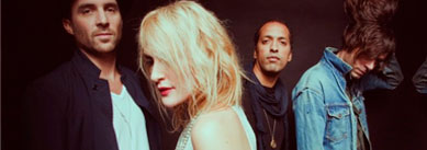 , Metric – Synthetica