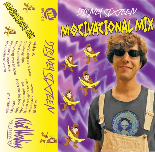 disney sixteen - motivational mix